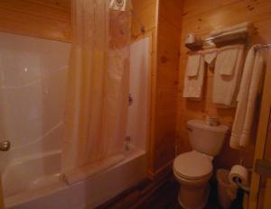A bathroom at Edinboro Lake Resort Cabins