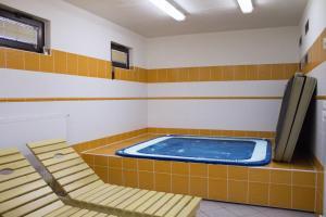 Bazén v ubytování Chalupy Na Rališce nebo v jeho okolí