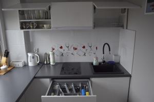 Kuchnia lub aneks kuchenny w obiekcie Apartamenty Słowackiego 1 & Ogrodowa 2