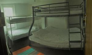 A bunk bed or bunk beds in a room at Dover Backpackers
