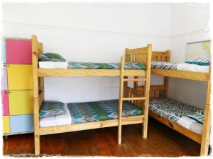 A bunk bed or bunk beds in a room at Shepherd's Tree Backpackers