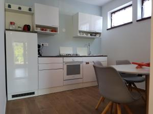 A kitchen or kitchenette at Apartments Siga
