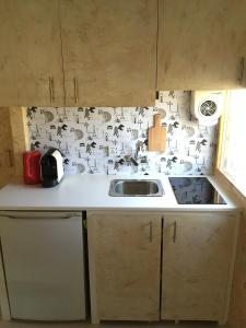 A kitchen or kitchenette at Relax Container