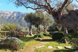 A garden outside Sa Pedrissa