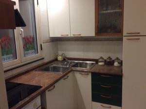 A kitchen or kitchenette at Alloggio privato Giunic