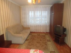Телевизор и/или развлекательный центр в Квартира у Ледового Дворца