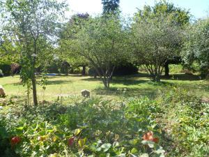 Jardin de l'établissement gîte du Clos Sébastien