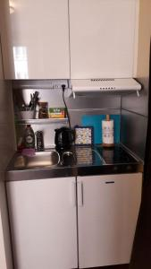 A kitchen or kitchenette at Business style apartment in Helsinki city center