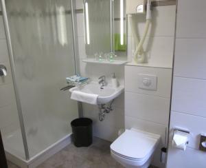 A bathroom at Gasthof Rodachtal mit Gästehaus Katharina
