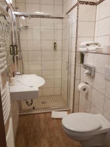 Ein Badezimmer in der Unterkunft Hotel Medaillon