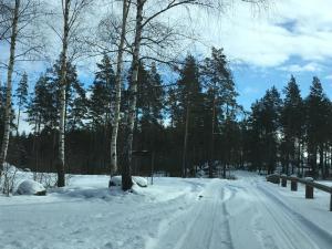 Rosenfors im Winter