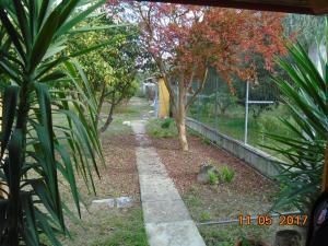 A garden outside Villa Lela Amaliada