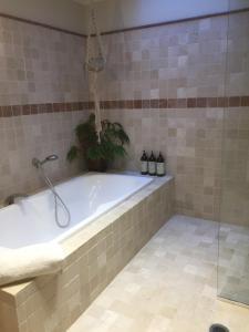 A bathroom at Asimatree B & B and Art Garden