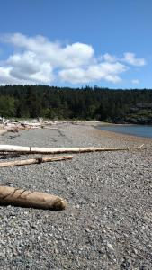 A beach at or near the bed & breakfast
