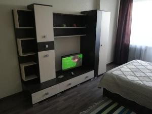 A television and/or entertainment centre at Apartment Finika4 on Frunze 49/1