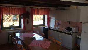 A kitchen or kitchenette at Pension u Adršpachu - Dana Tyšerová
