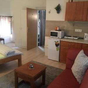Kuchyň nebo kuchyňský kout v ubytování Apartment Pod Kotnovem
