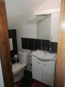 Ein Badezimmer in der Unterkunft Guesthouse Vila Puzic