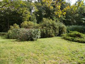 Jardin de l'établissement Domaine des Sapins