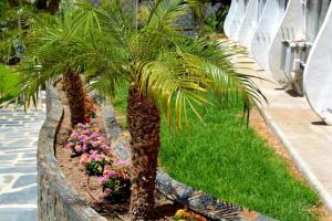 Jardín al aire libre en Apartment Playmon Park