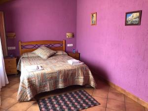 Cama o camas de una habitación en Hotel CTR San Baudelio
