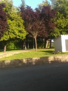 A garden outside Braccianese Guest House