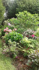 A garden outside Les ruettes