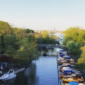 Utsikt över poolen vid Dockside Hostel Old Town eller i närheten