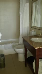 A bathroom at Holiday Inn Sarasota-Lido Beach at the Beach