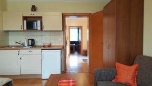 Kuchyň nebo kuchyňský kout v ubytování Jihoceska Pohoda