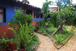 A garden outside Hostal El Rincón de los Camellos