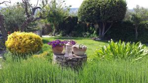 Jardín al aire libre en Casa Olyves