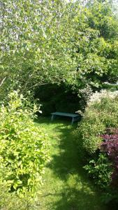 A garden outside Cameley Lodge