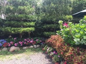 玉荷園 室外花園