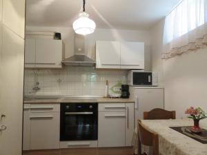 Kuhinja oz. manjša kuhinja v nastanitvi Apartment Erika