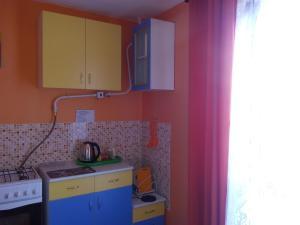 Кухня или мини-кухня в Апартаменты в пгт Грибановский
