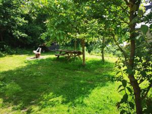 Ein Garten an der Unterkunft b en b oostvoorne
