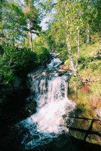 Natuurlandschap vlak bij het vakantiehuis