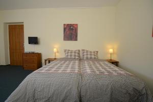 Een bed of bedden in een kamer bij Penzion Art kutna Hora