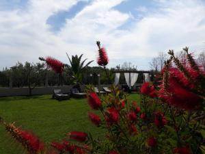 A garden outside Pansion Argo