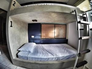 A bunk bed or bunk beds in a room at Lobo de Mar Hostel