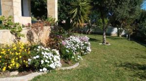 Ein Garten an der Unterkunft Calafell Residencial