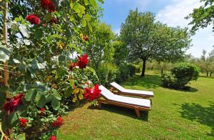 A garden outside Holiday Home Sergo