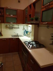 Кухня или мини-кухня в Апартаменты у Казанского собора