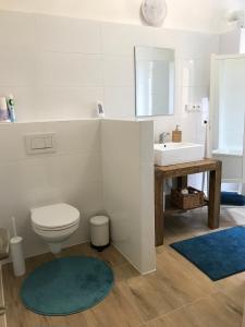 Koupelna v ubytování Vila ANA