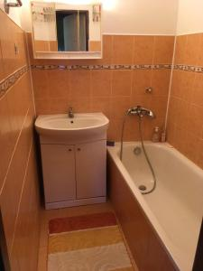 A bathroom at Horsky apartman Medenec