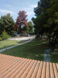 Κήπος έξω από το Sithonia Alekos Luxury Experience