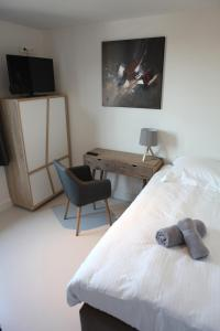 A television and/or entertainment centre at Elberg ApartHotel