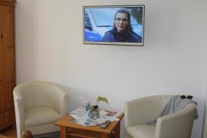 TV/Unterhaltungsangebot in der Unterkunft Pension Treenehof