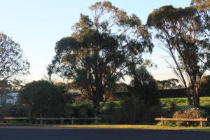 A garden outside Mt Gambier International